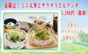 ミニ天丼とサラダうどんランチ
